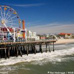 Contact us in Santa Monica pier